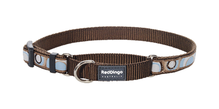 Red Dingo Martingale Collar in Circadelic Brown