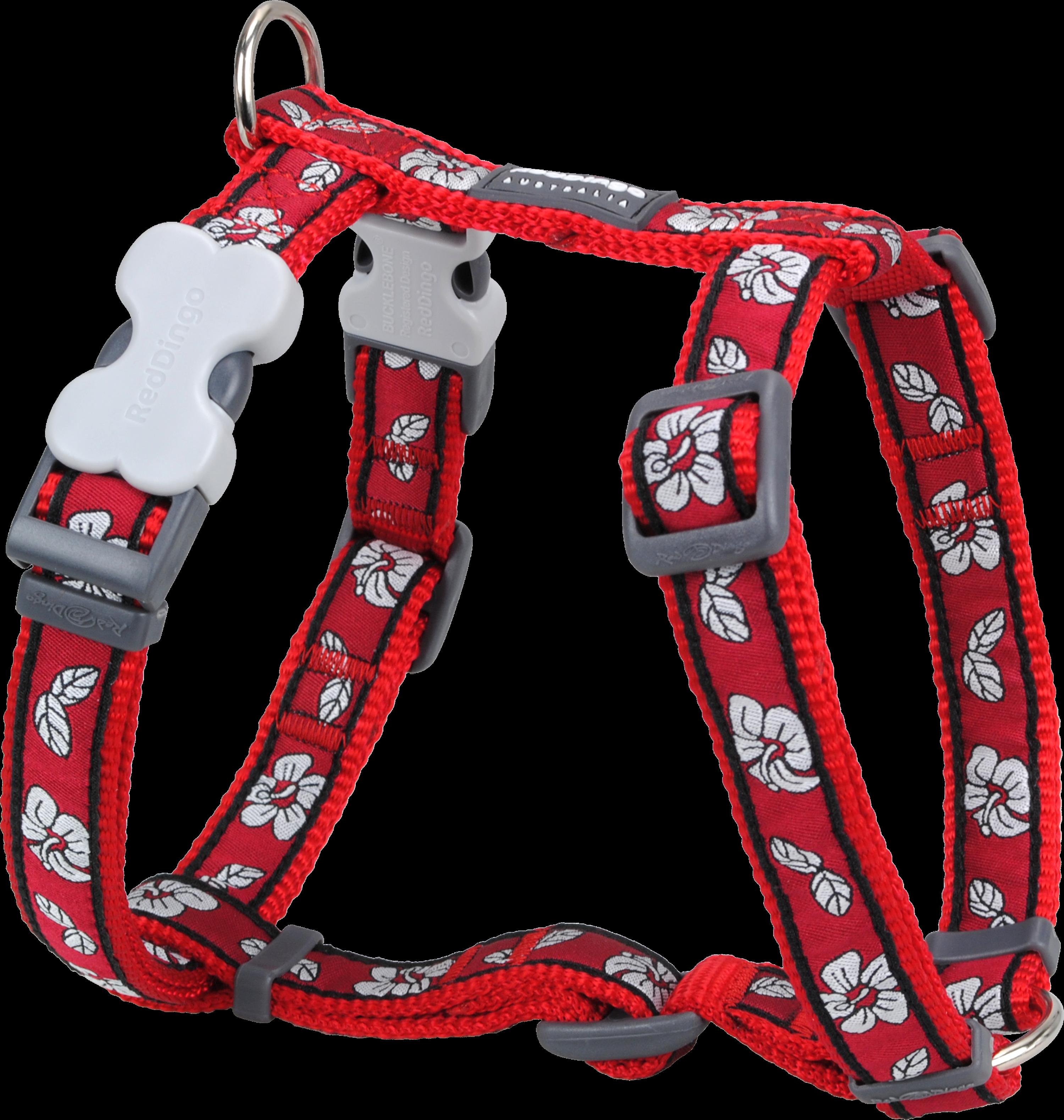 Red Dingo Dog Harness Large