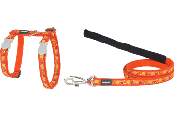 Red Dingo Cat Harness & Lead Breezy Love Orange CH-BZ-OR