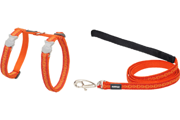 Red Dingo Cat Harness & Lead Cosmos Orange CH-CO-OR