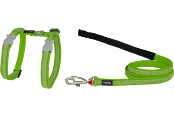 Red Dingo Cat Harness & Lead Daisy Chain Lime Green CH-DC-LG