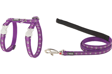 Red Dingo Cat Harness & Lead Desert Paws Purple CH-DP-PU