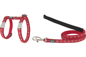 Red Dingo Cat Harness & Lead Desert Paws Red CH-DP-RE