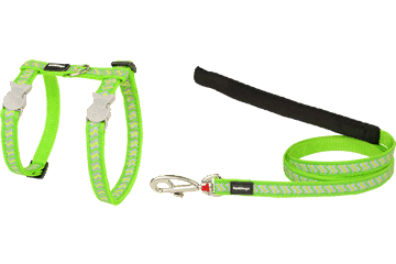 Red Dingo Cat Harness & Lead Reflective Ziggy Lime Green CH-RZ-LG