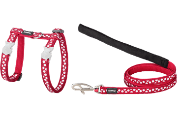 Red Dingo Cat Harness & Lead White Spots Red CH-S5-RE