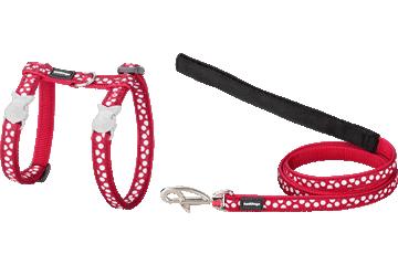Red Dingo Kedi Göğüs Tasması ve Uzatma Kombo Beyaz Benekler Kırmızı CH-S5-RE