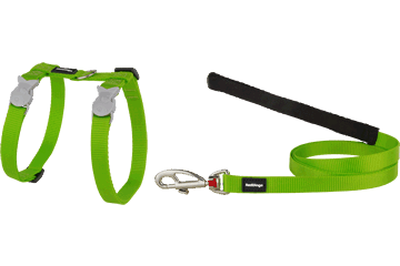 Red Dingo Cat Harness & Lead Classic Lime Green CH-ZZ-LG