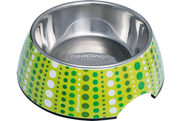 Red Dingo Stainless Steel Bowl Lotzadotz Lime Green DB-LD-LG