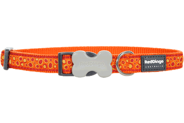 Red Dingo Dog Collar Bedrock Arancione DC-BE-OR