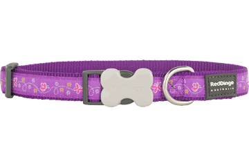 Red Dingo Dog Collar Butterfly Purple DC-BL-PU
