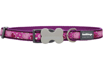 Red Dingo Dog Collar Breezy Love Purple DC-BZ-PU