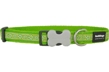 Red Dingo Dog Collar Daisy Chain Lime Green DC-DC-LG