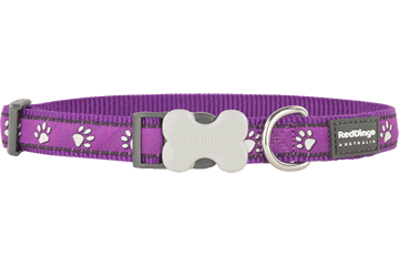 Red Dingo Dog Collar Desert Paws Purple DC-DP-PU