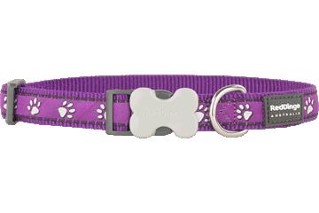 Red Dingo Dog Collar Desert Paws Purple DC-DP-PU