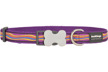 Red Dingo Dog Collar Dreamstream Purple DC-DS-PU