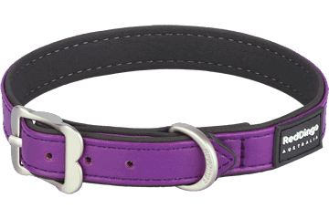 Red Dingo Dog Collar Elegant Viola DC-EL-PU