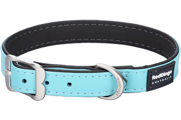 Red Dingo Dog Collar Elegant Turquoise DC-EL-TQ