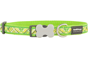 Red Dingo Dog Collar Flanno Lime Green DC-FN-LG