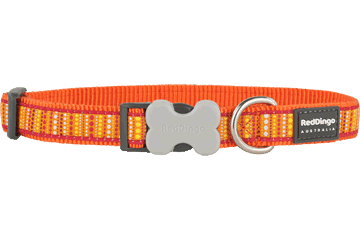 Red Dingo Dog Collar Lotzadotz Orange DC-LD-OR