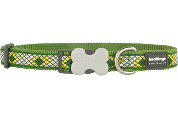 Red Dingo Dog Collar Monty Green DC-MY-GR