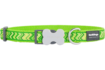 Red Dingo Dog Collar Pizzazz Lime Green DC-PZ-LG