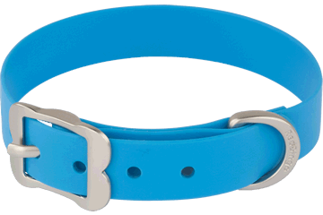 Red Dingo Dog Collar Vivid PVC Blue DC-VI-DB