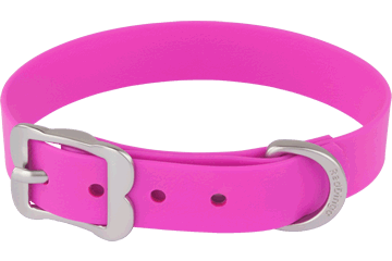 Red Dingo Dog Collar Vivid PVC Hot Pink DC-VI-HP