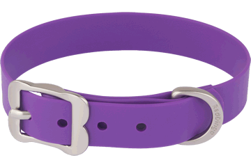 Red Dingo Dog Collar Vivid PVC Purple DC-VI-PU