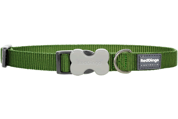 Red Dingo Dog Collar Classic Green DC-ZZ-GR