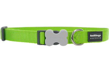 Red Dingo Dog Collar Classic Lime Green DC-ZZ-LG