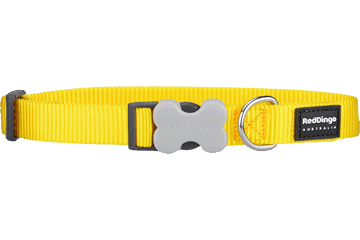 Red Dingo Dog Collar Classic Yellow DC-ZZ-YE