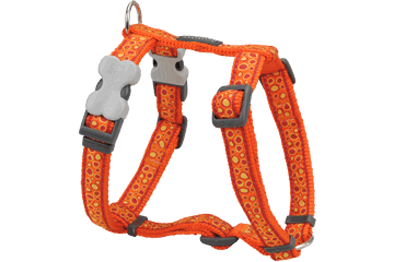 Red Dingo Dog Harness Bedrock Arancione DH-BE-OR