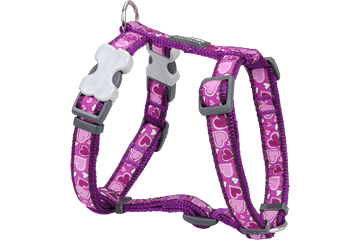 Red Dingo Dog Harness Breezy Love purper DH-BZ-PU