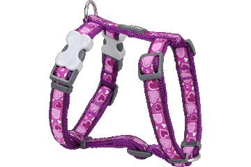 Red Dingo Dog Harness Breezy Love Purple DH-BZ-PU