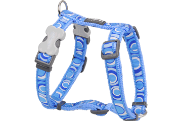 Red Dingo Dog Harness Circadelic Medium Blue DH-CI-MB