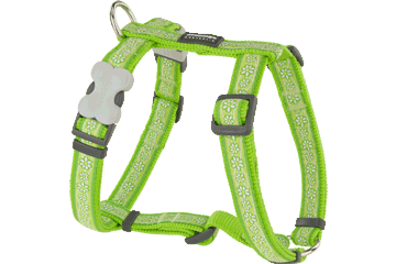 Red Dingo Dog Harness Daisy Chain Lime Green DH-DC-LG