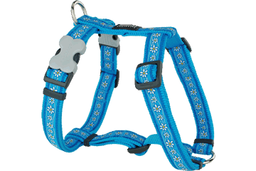 Red Dingo Dog Harness Daisy Chain Turquoise DH-DC-TQ