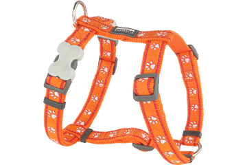 Red Dingo Dog Harness Desert Paws Arancione DH-DP-OR