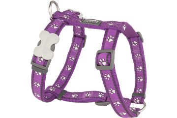Red Dingo Dog Harness Desert Paws Viola DH-DP-PU