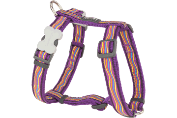Red Dingo Dog Harness Dreamstream Viola DH-DS-PU