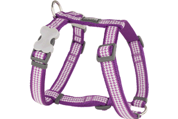 Red Dingo Dog Harness Fang It Viola DH-FG-PU