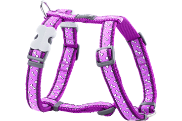 Red Dingo Dog Harness Flying Bones Viola DH-FL-PU