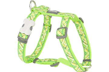 Red Dingo Dog Harness Flanno Lime Green DH-FN-LG