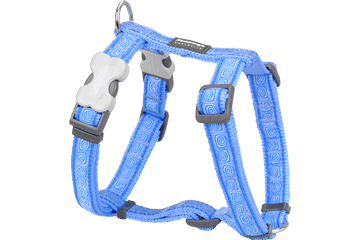 Red Dingo Dog Harness Hypno Medium Blue DH-HY-MB