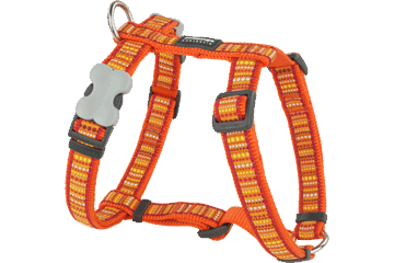 Red Dingo 犬用ハーネス Lotzadotz オレンジ DH-LD-OR