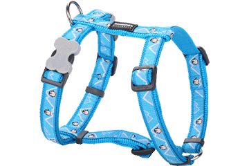 Red Dingo Dog Harness Penguin Turquoise DH-PE-TQ