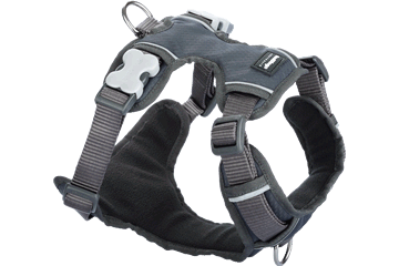 Red Dingo Dog Harness Padded Harness grijs DH-PH-GY