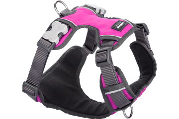 Red Dingo Dog Harness Padded Harness Hot Pink DH-PH-HP
