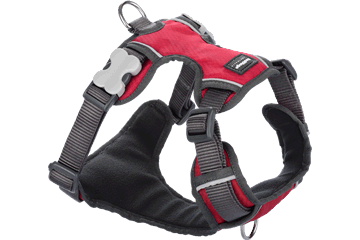 Red Dingo Dog Harness Padded Harness Red DH-PH-RE