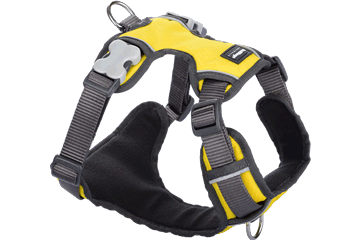Red Dingo Dog Harness Padded Harness Yellow DH-PH-YE